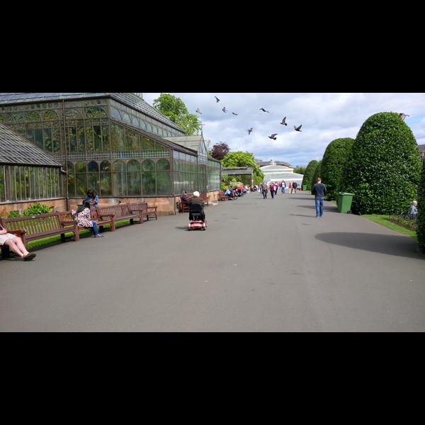 Glasgow Botanics