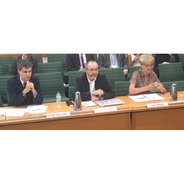 Steve Akhurst of Shelter, Prof J Henneberry, and Liz Peace CBE address the committee