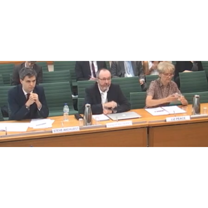 Steve Akhurst of Shelter, Prof J Henneberry, and Liz Peace CBE address the committee